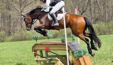 Martin Douzant winning Fair Hill Horse Trials on Frame Shamrock